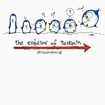 Evolution Of Penguin - PenguiNation by ordinarypoet