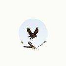 Aquila audax fleayi 'Wedge-Tailed Eagle' by Sam Lyne