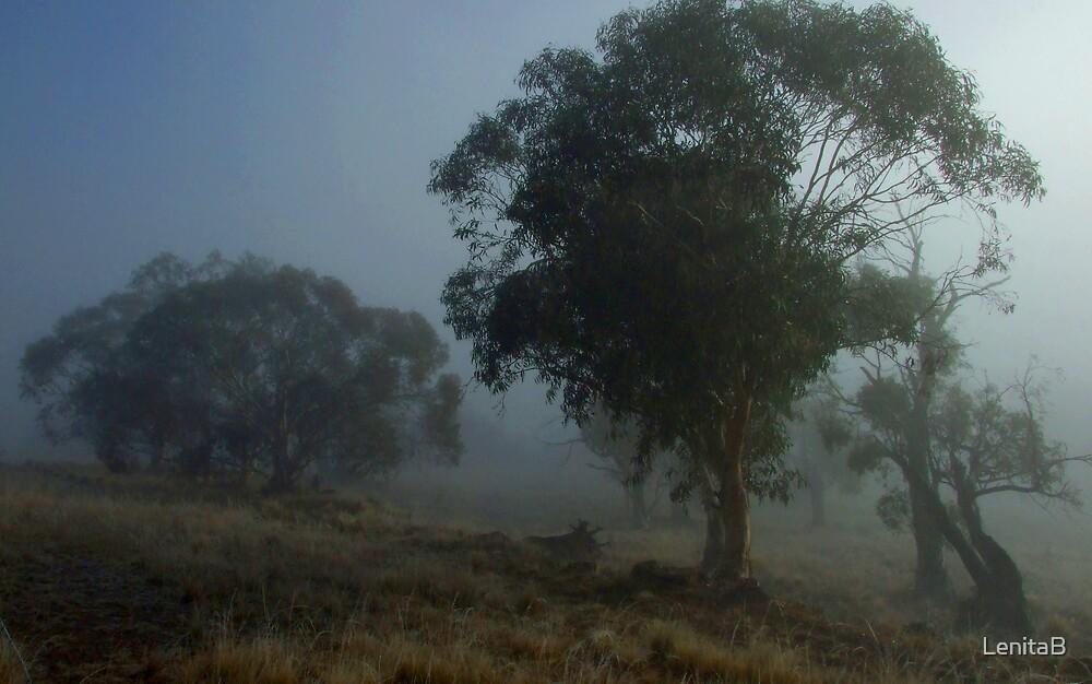 Misty Paddock by LenitaB