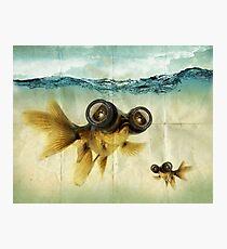 Lens Eyed Fish Photographic Print