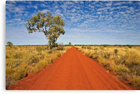 The Gunbarrel Highway by Blue Gum Pictures