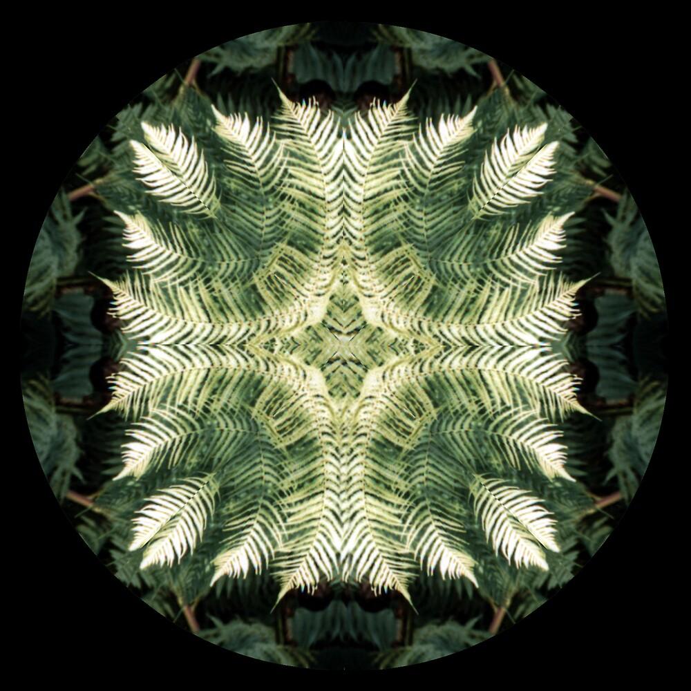 fern mandala by SarahTrangmar