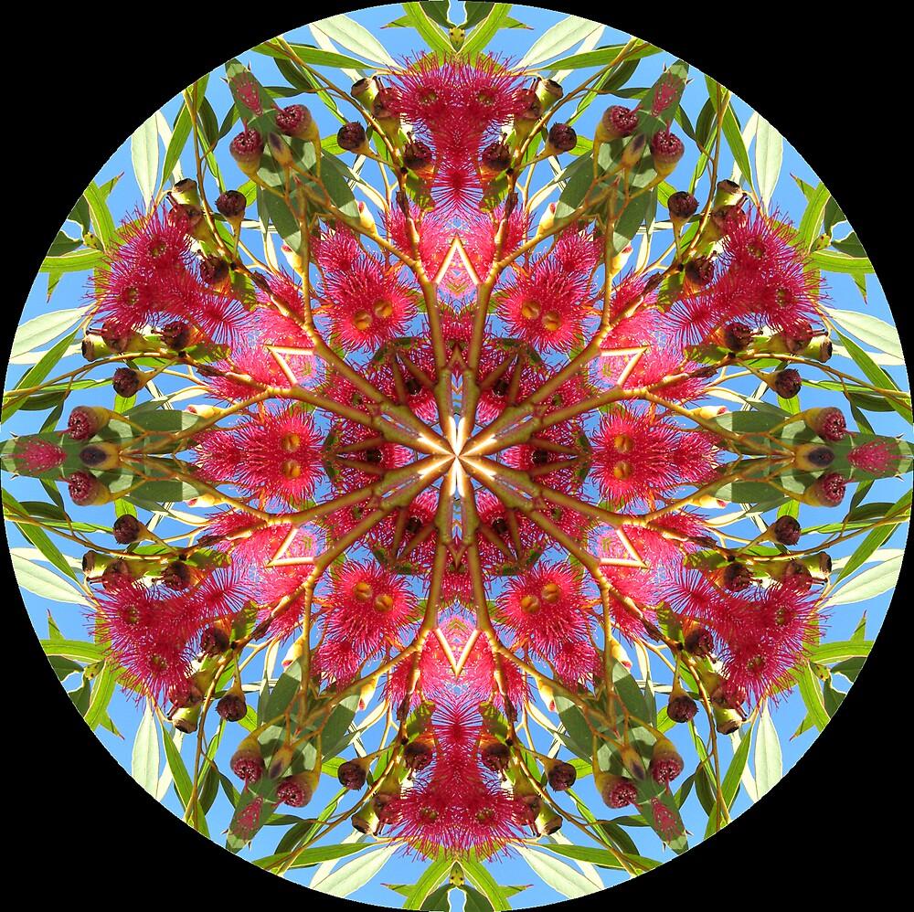 mandala of red gum flowers by SarahTrangmar