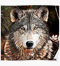 WOLF GRAY - GRAY WOLF - LOUP GRAY Poster