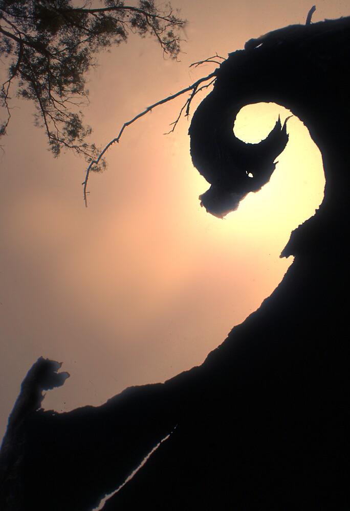 Dragon tree by SarahTrangmar