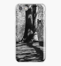 St Columba Statue in St Columbs park iPhone Case/Skin