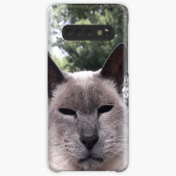 """What, another picture?"" Kitty Samsung Galaxy Snap Case"