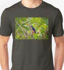 An Azure Kingfisher bird at Corroboree Billabong, Australia T-Shirt