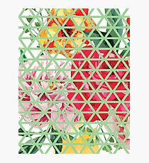 Floral Triangles Design Photographic Print
