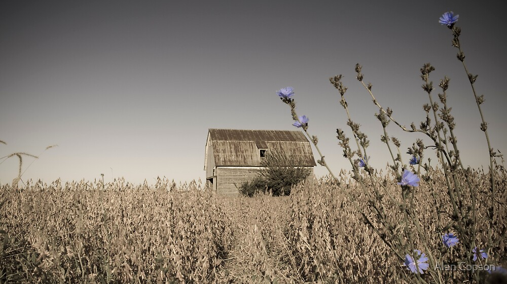 Barn beside old Route 66. Odell. by Alan Copson