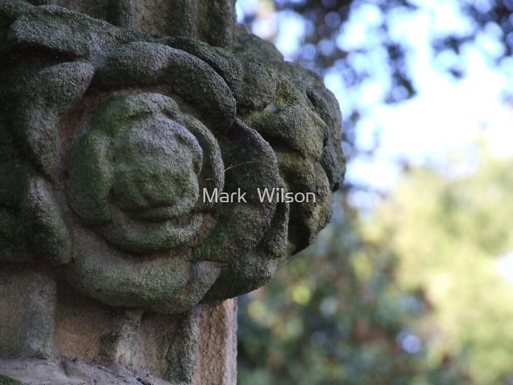 Grave Stone III by Mark  Wilson