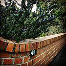 Urban 48 - Burwood by Elaine Stevenson