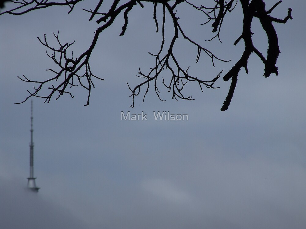 Suspended by Mark  Wilson