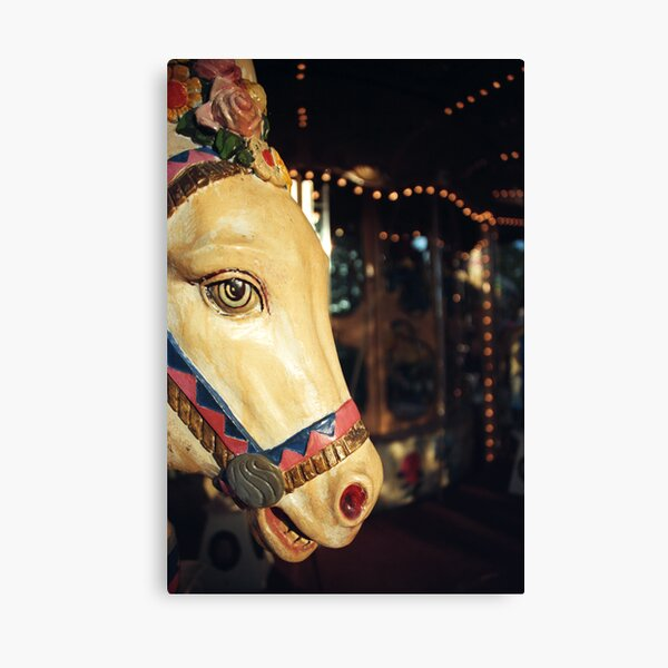 Merry-go-round donkey Canvas Print