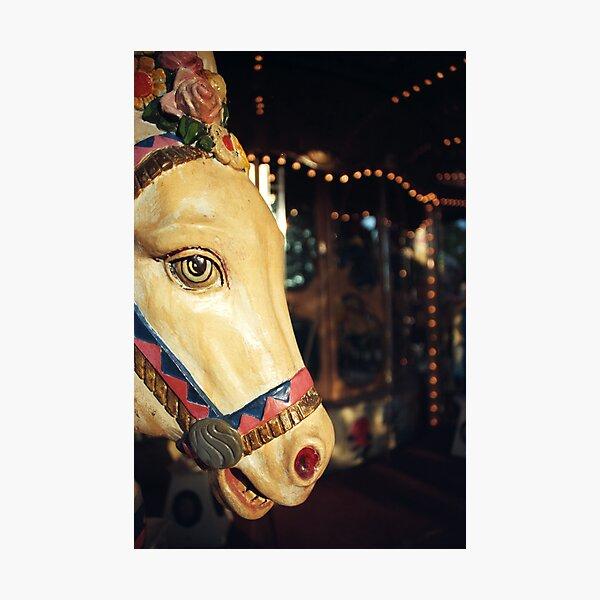 Merry-go-round donkey Photographic Print