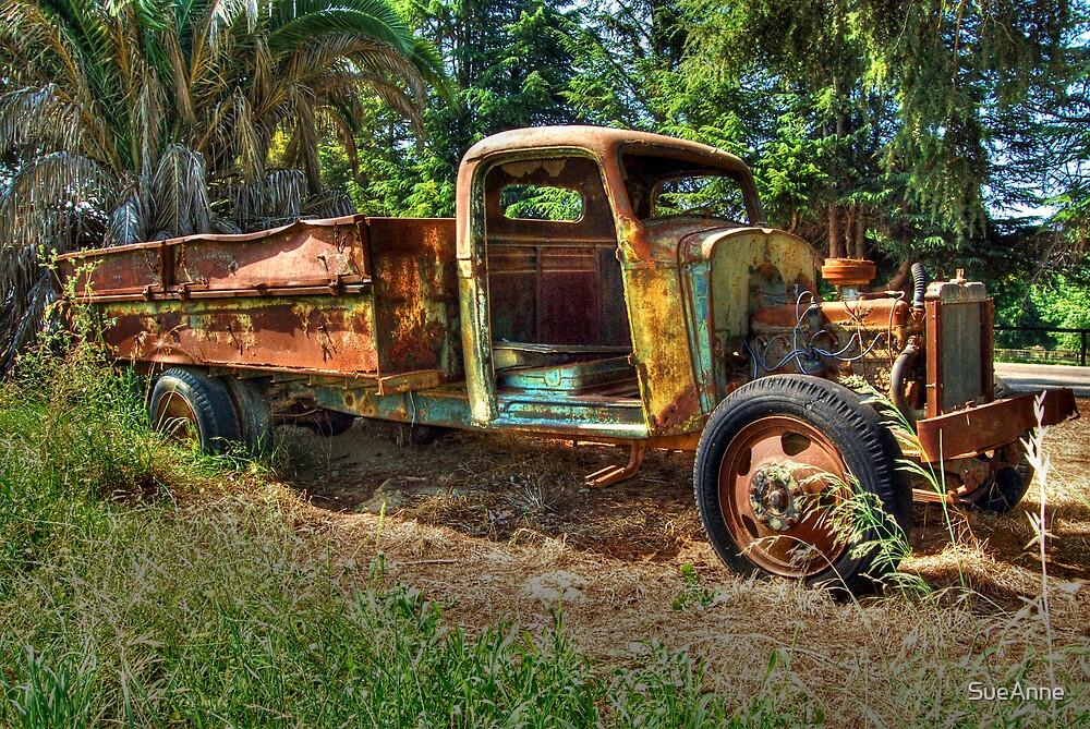 The Forgotten Truck by SueAnne