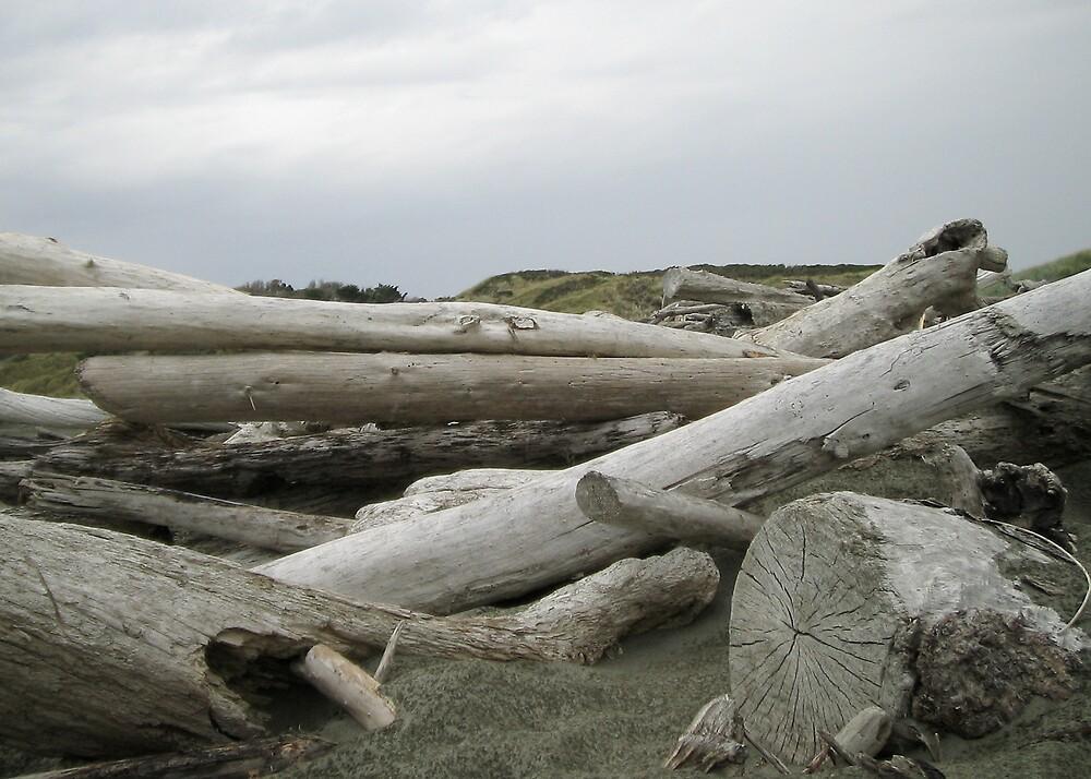 Driftwood by abby hughes