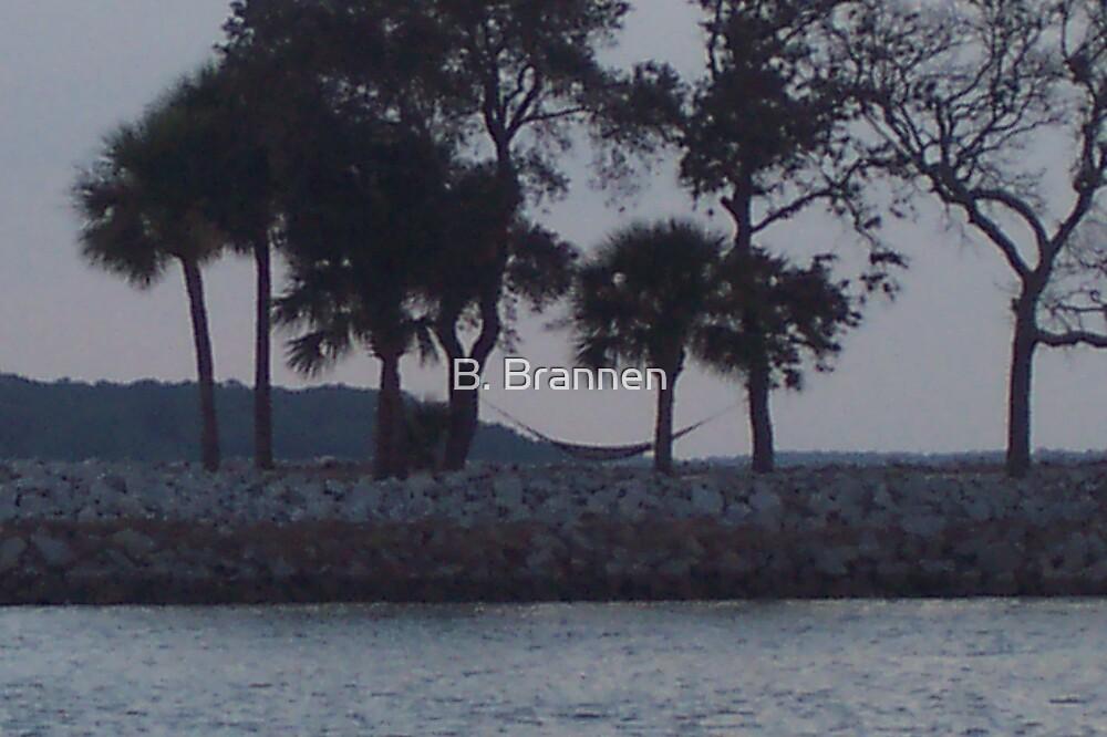 Hammock between Palms on Island by B. Brannen