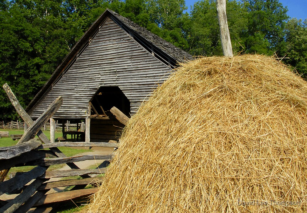 Hay Barn by David Lee Thompson