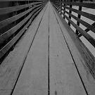 Crossing the Susinta  by John  Kapusta