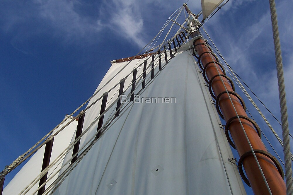 Boat sail and sky by B. Brannen