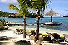 Tropical Oasis in the British Virgin Islands by DARRIN ALDRIDGE