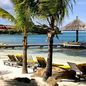 Tropical Oasis in the British Virgin Islands by DARRINSWORK
