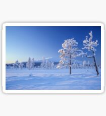 Snow covered trees Sticker