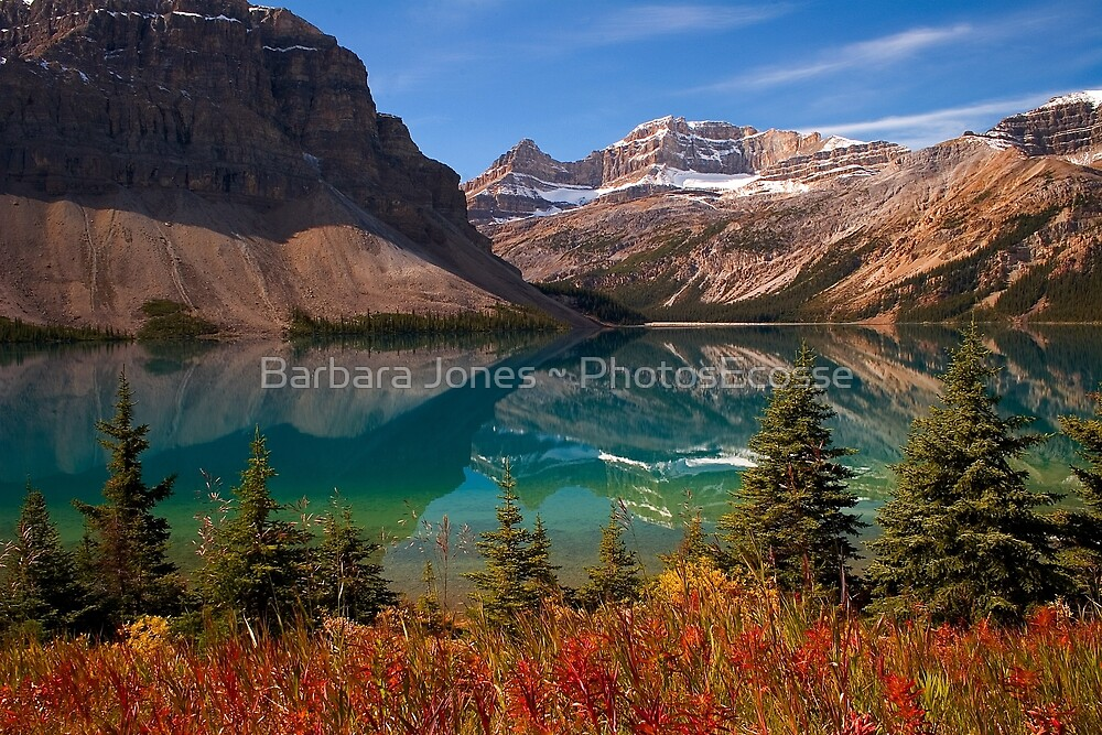 Quot Bow Lake Reflection In Fall Icefields Parkway National