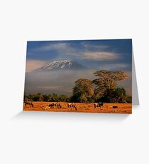 Kilimanjaro in early morning light, Amboseli National Park, Kenya, Africa. Greeting Card