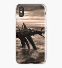Storm over the lake iPhone Case/Skin