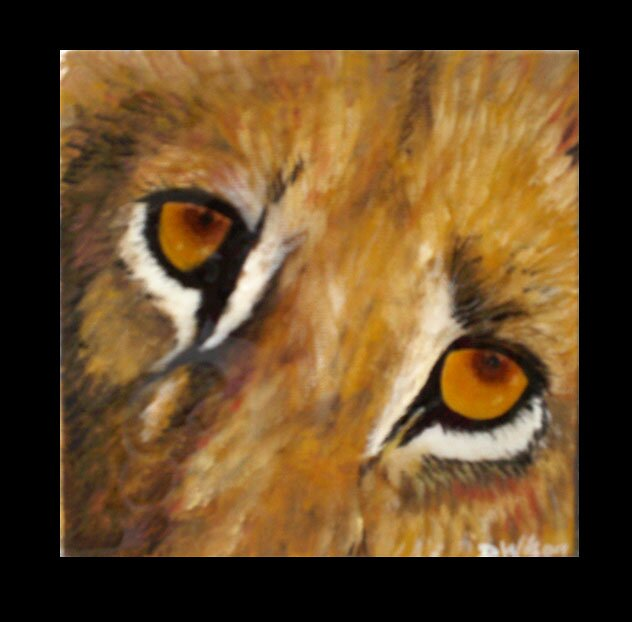 lion eyes by goodthing