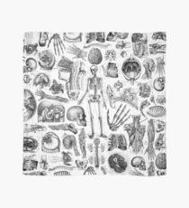 Human Anatomy White Print Scarf