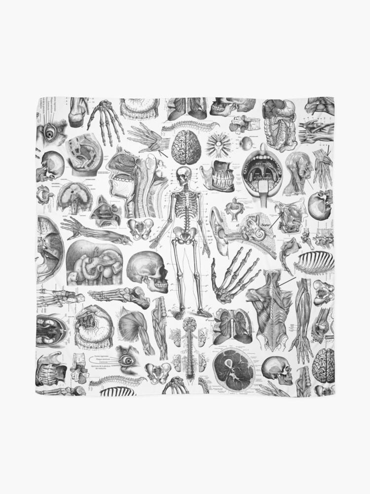 Alternate view of Human Anatomy White Print Scarf