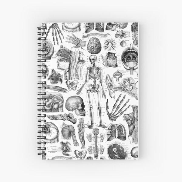 Human Anatomy White Print Spiral Notebook