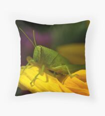 Cozy  Throw Pillow