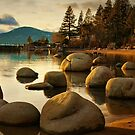 Tahoe Shore by Barbara  Brown