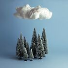 A cloud over the forest by josemanuelerre