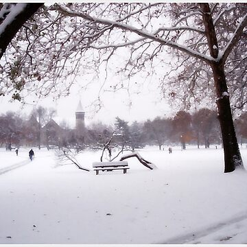 Winter at OSU: II by rmcbuckeye