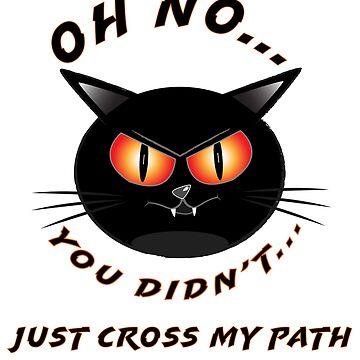 Don't Cross a Black Cat's Path by FlatheadMedia