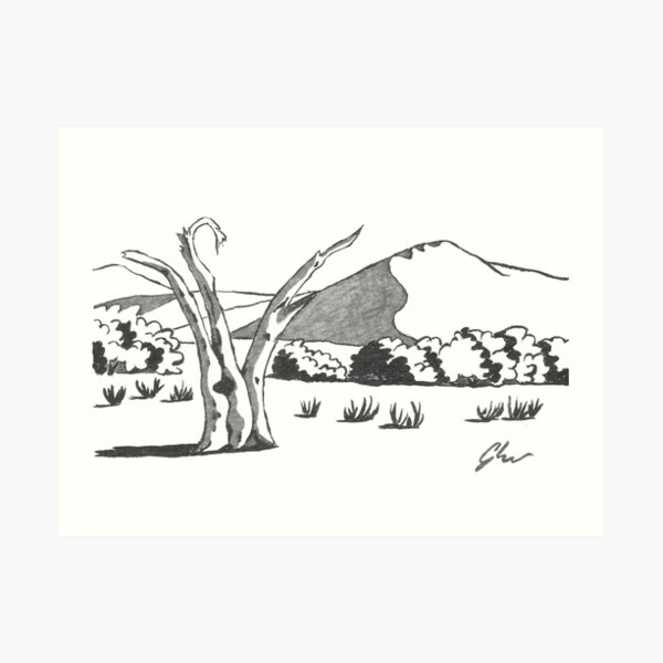 Dunes & Dead Tree - Namibia Art Print