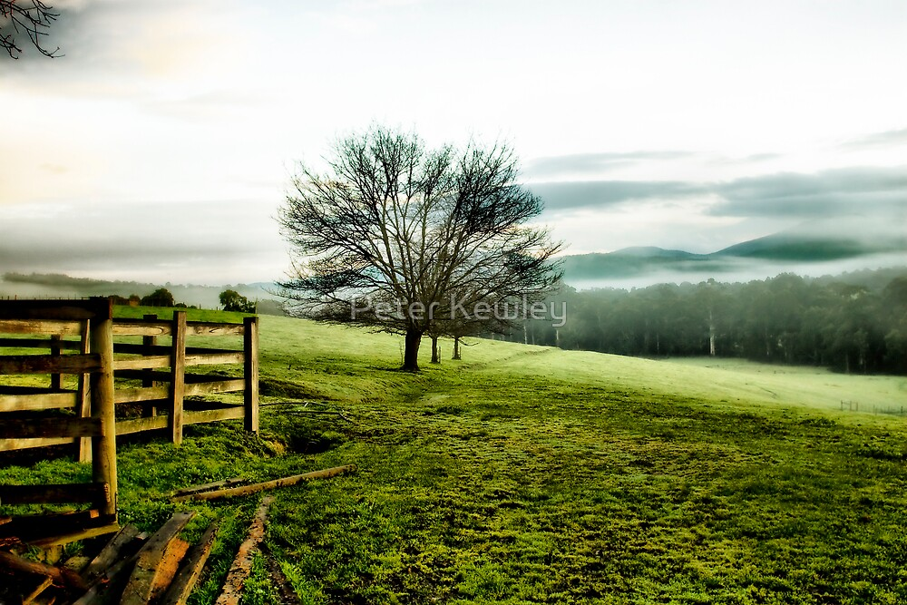 Misty Valley by Peter Kewley