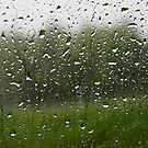rain storm by GJdisplay