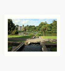 Johnstown castle view 3 Art Print