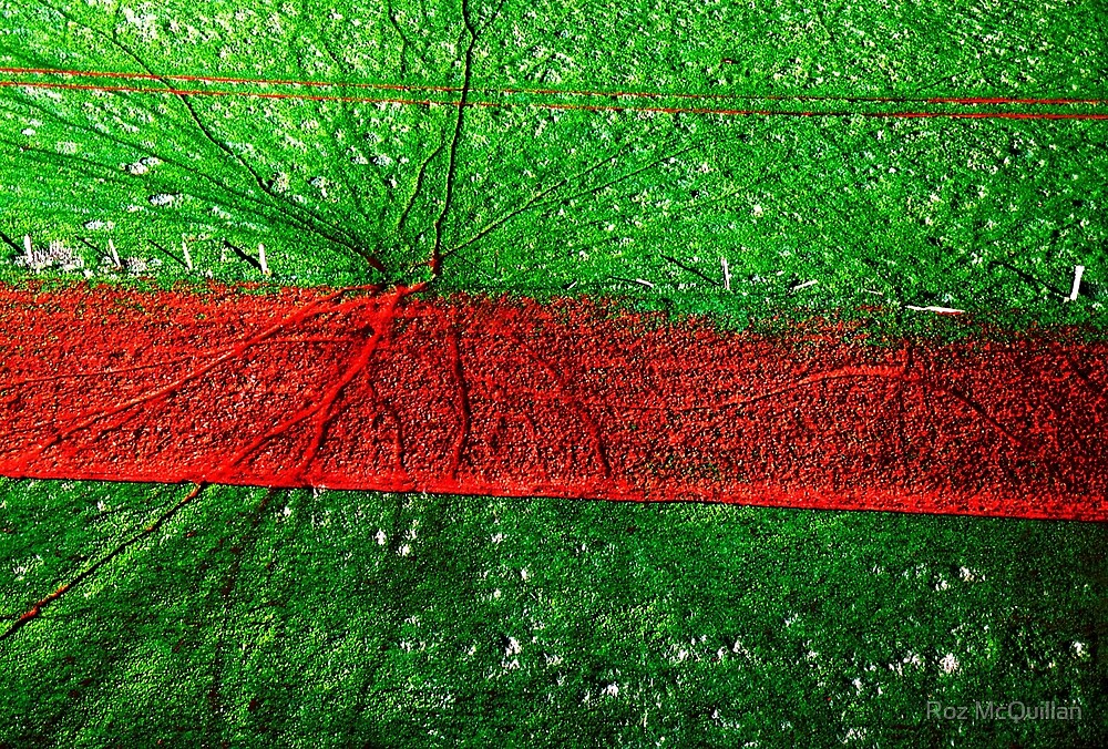 Red road, aerial landscape photograph by Roz McQuillan