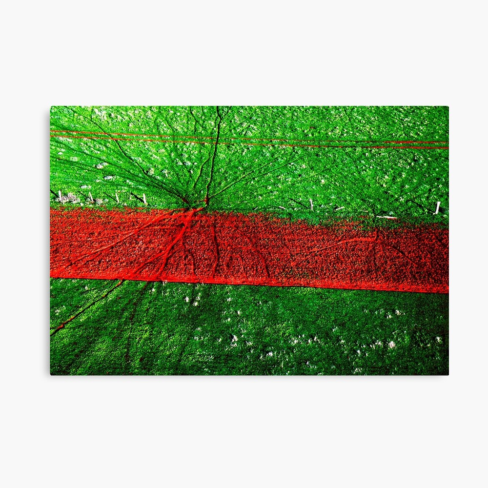 Red road, aerial landscape photograph Canvas Print