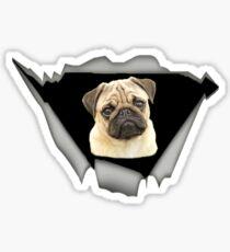 Best Gift For Pug Lovers Sticker
