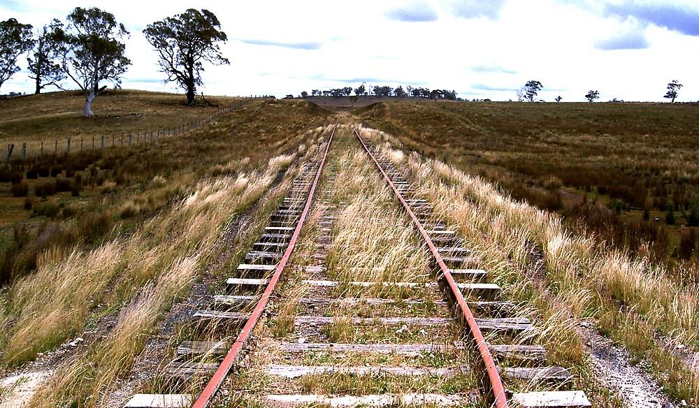 Bukalong Siding, NSW by Greg Long