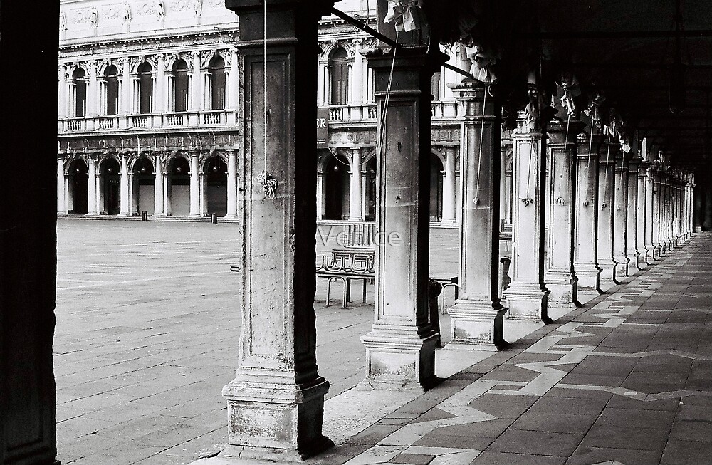 Arches  by Venice