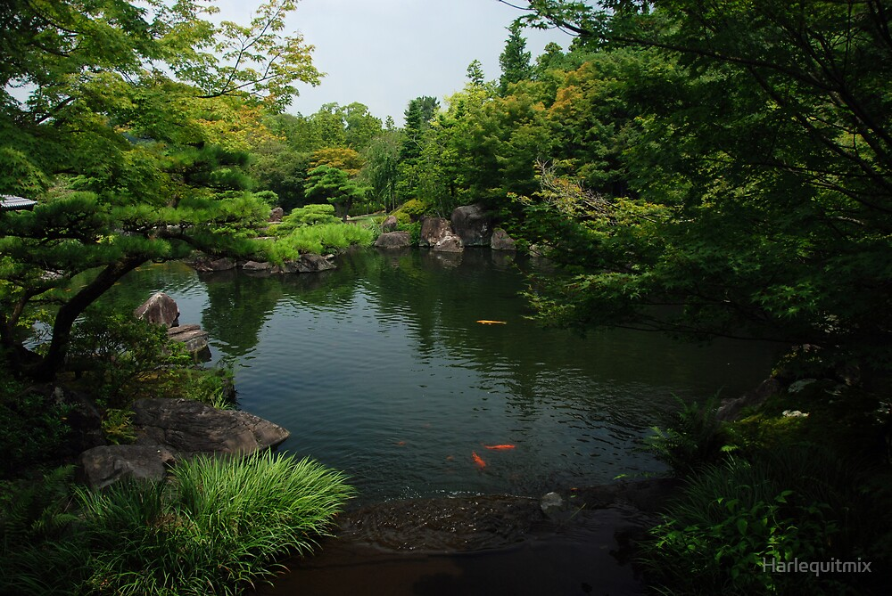 Japanese Pond by Harlequitmix